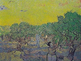 Olive Grove with Picking Figures, 1889 von Vincent van Gogh | Gemälde-Reproduktion