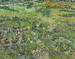 Meadow in the Garden of Saint-Paul Hospital, 1890 by Vincent van Gogh | Painting Reproduction