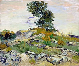 Rocks with Oak Tree, 1888 by Vincent van Gogh | Painting Reproduction