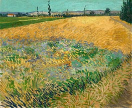 Wheat Field with the Alpilles Foothills, 1888 by Vincent van Gogh | Painting Reproduction