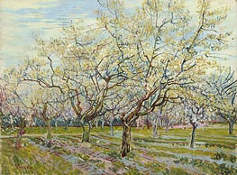 The White Orchard, 1888 by Vincent van Gogh | Painting Reproduction