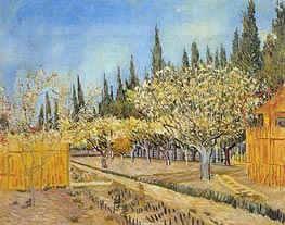 Orchard in Blossom, Bordered by Cypresses, April 1888 von Vincent van Gogh | Gemälde-Reproduktion