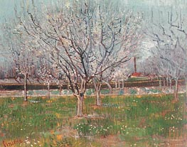 Orchard in Blossom (Plum Trees), April 1888 by Vincent van Gogh | Painting Reproduction