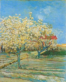 Orchard in Blossom, April 1888 by Vincent van Gogh | Painting Reproduction