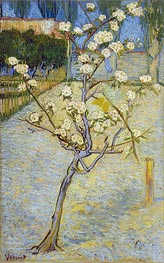 Blossoming Pear Tree, 1888 by Vincent van Gogh | Painting Reproduction
