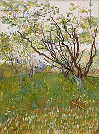 Orchard in Blossom | Vincent van Gogh | Painting Reproduction