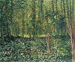 Trees and Undergrowth | Vincent van Gogh | Painting Reproduction