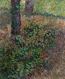 Undergrowth | Vincent van Gogh | Painting Reproduction