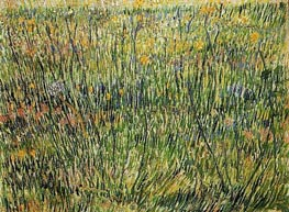 Pasture in Bloom | Vincent van Gogh | Painting Reproduction