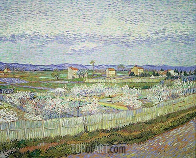 Peach Blossom in the Crau, 1889 | Vincent van Gogh | Painting Reproduction