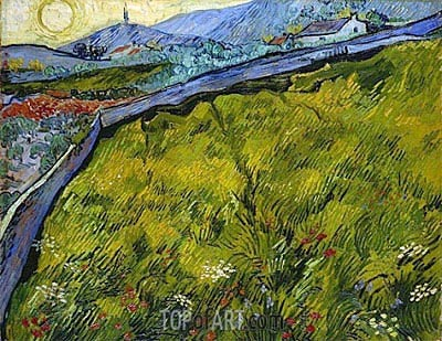 Field of Spring Wheat at Sunrise, 1889 | Vincent van Gogh | Painting Reproduction