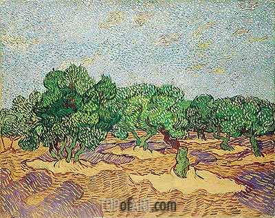 Olive Orchard, 1889 | Vincent van Gogh | Painting Reproduction