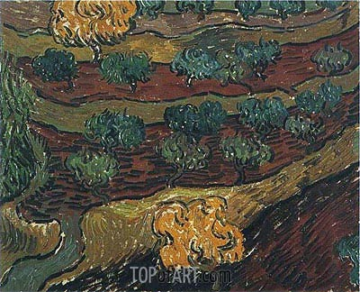 Olive Trees against a Slope of a Hill, 1889 | Vincent van Gogh | Painting Reproduction