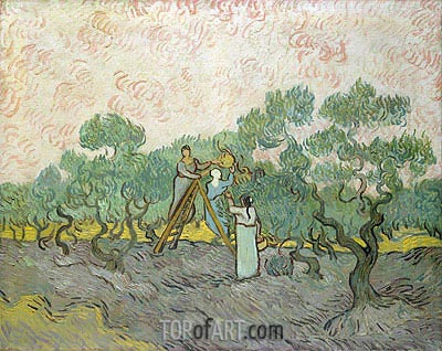Olive Picking, 1889 | Vincent van Gogh | Gemälde Reproduktion