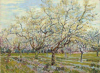 The White Orchard, 1888 | Vincent van Gogh | Gemälde Reproduktion