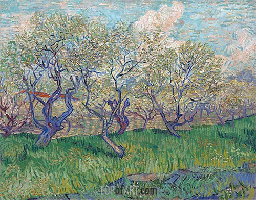 Orchard in Bloom, 1888 | Vincent van Gogh | Painting Reproduction