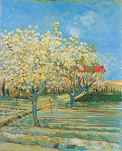 Orchard in Blossom, April 1888 | Vincent van Gogh | Painting Reproduction
