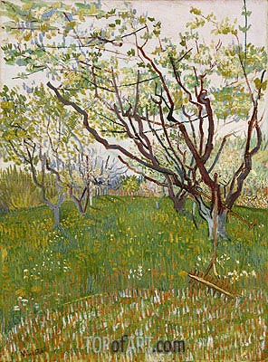 Orchard in Blossom, 1888 | Vincent van Gogh | Painting Reproduction