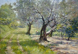 The Olive Grove, c.1910 by William Merritt Chase | Painting Reproduction