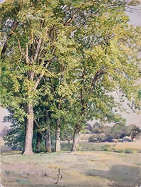 Maples in Chester County, Pennsylvania, 1889 by William Trost Richards | Painting Reproduction