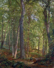 Juni Wald (Germantown), 1864 von William Trost Richards | Gemälde-Reproduktion