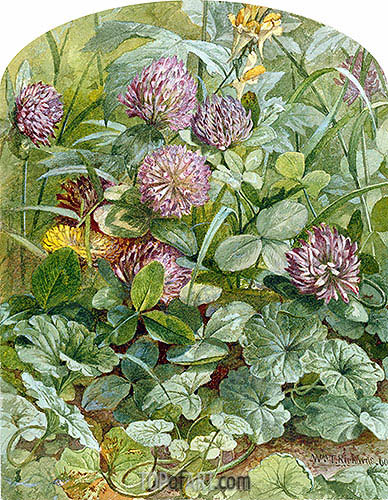 Red Clover with Butter-and-Eggs and Ground Ivy, 1860 | William Trost Richards | Painting Reproduction