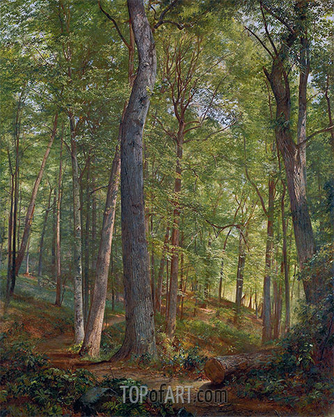 June Woods (Germantown), 1864 | William Trost Richards | Painting Reproduction